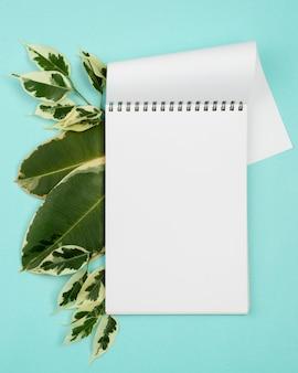 Vista superior do caderno com folhas de plantas