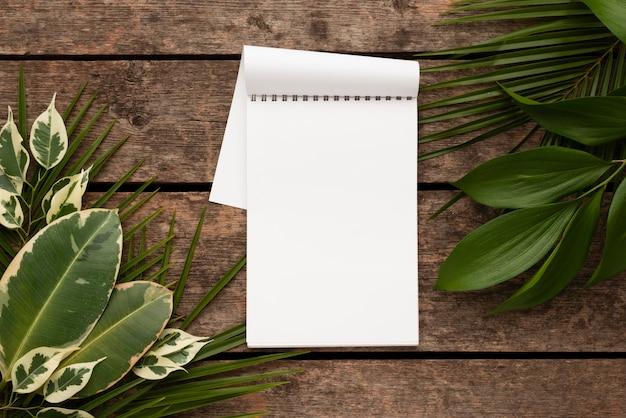 Vista superior do caderno com lindas folhas de plantas