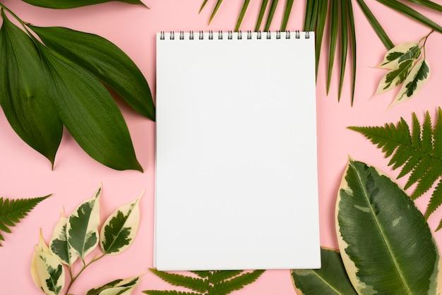 Vista superior do caderno com seleção de folhas de plantas