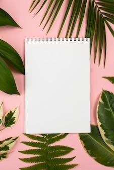 Vista superior do caderno com variedade de folhas de plantas