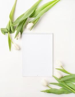Vista superior do calendário em branco com tulipas brancas sobre fundo branco.