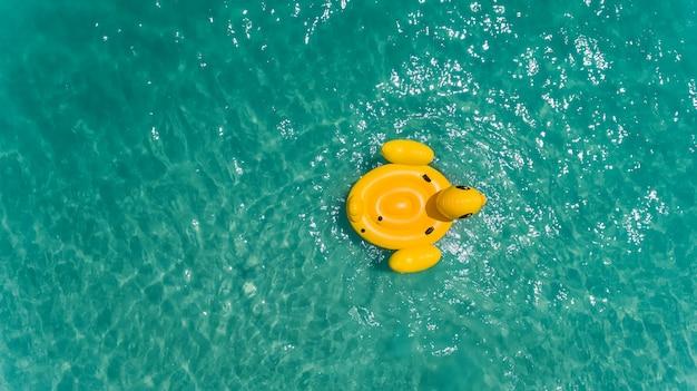 Vista superior do céu do pato nadando lifebuoy.