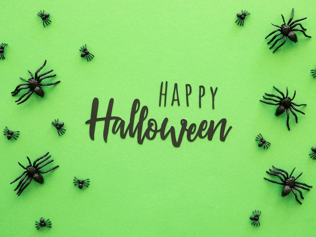 Vista superior do conceito de halloween com aranhas