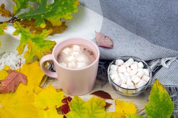 Vista superior do conceito de outono de cacau e marshmallows