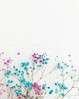 Vista superior do conceito floral beautful com espaço de cópia