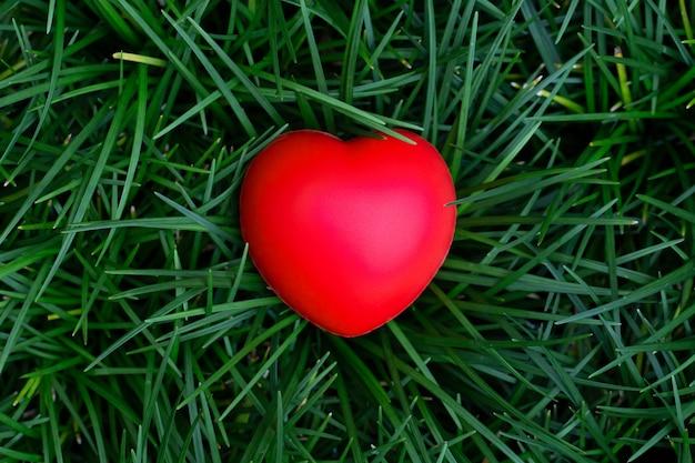 Vista superior do coração vermelho colocado na grama verde