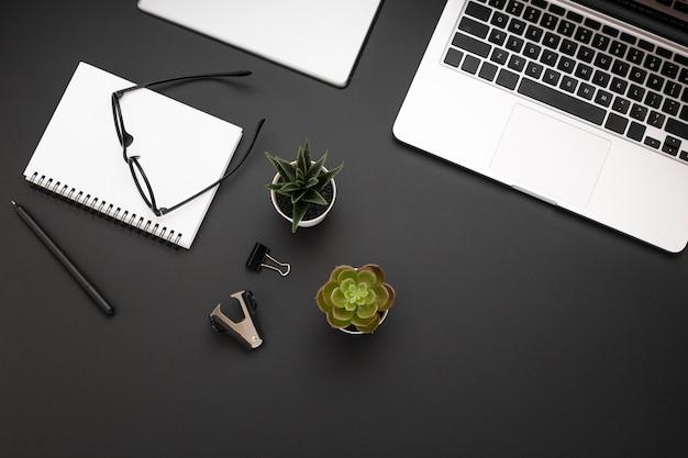 Vista superior do espaço de trabalho com laptop e suculentas