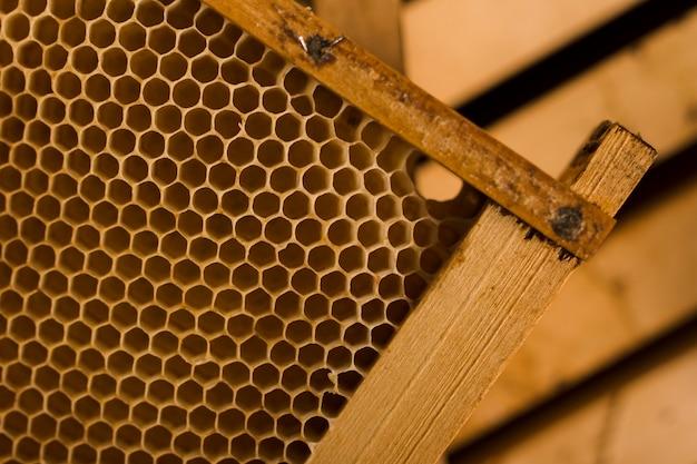 Vista superior do favo de mel