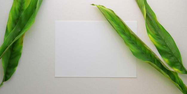 Vista superior do local de trabalho do artista confortável com papel de desenho e folhas na mesa branca