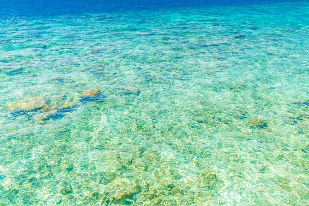 Vista superior do mar com os recifes de coral na ilha de maldivas.