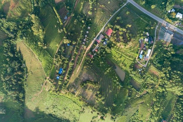 Vista superior do parque textura de grama natural pela manhã.