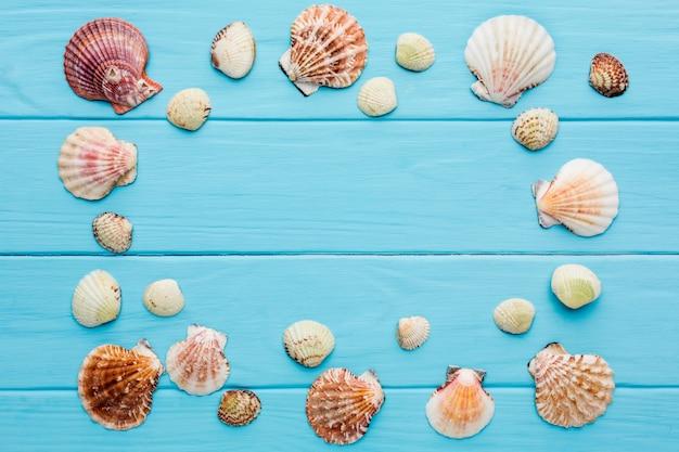 Vista superior do quadro de conchas com espaço de cópia