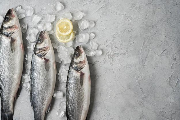 Vista superior do quadro de peixe com gelo e limão
