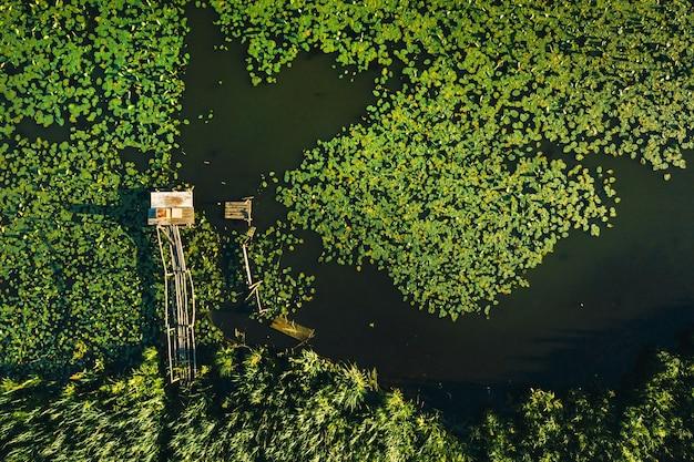 Vista superior do rio svisloch, no parque loshitsa da cidade, com lírios ao pôr do sol. bela natureza da bielorrússia.