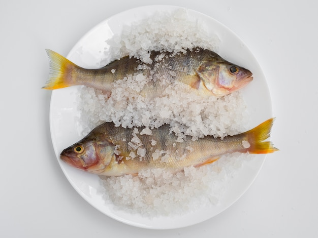 Vista superior dois peixes no prato com sal mineral