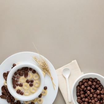 Vista superior dos cereais matinais em uma tigela com leite e espaço de cópia