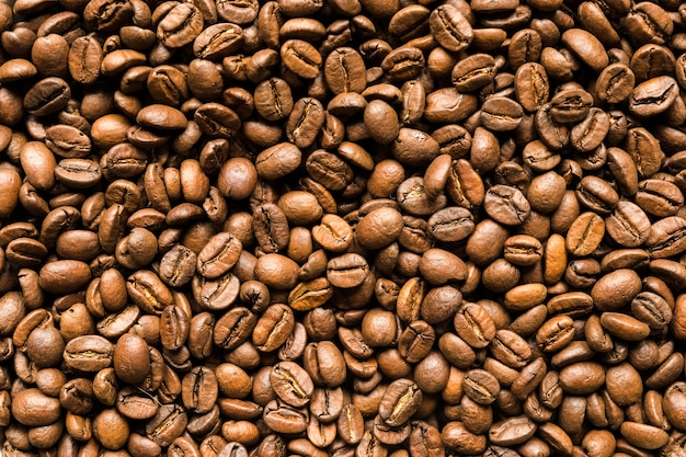 Vista superior dos grãos de café