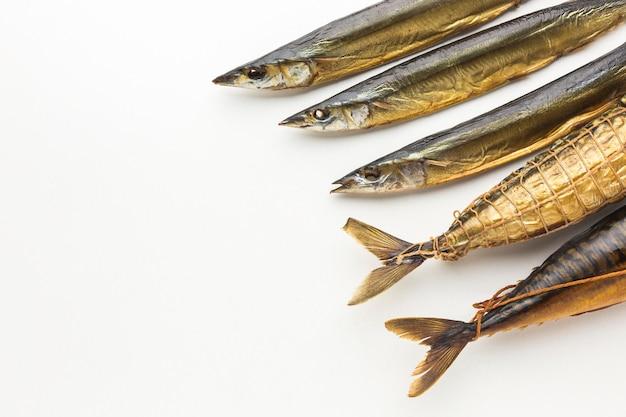 Vista superior dos peixes no fundo branco