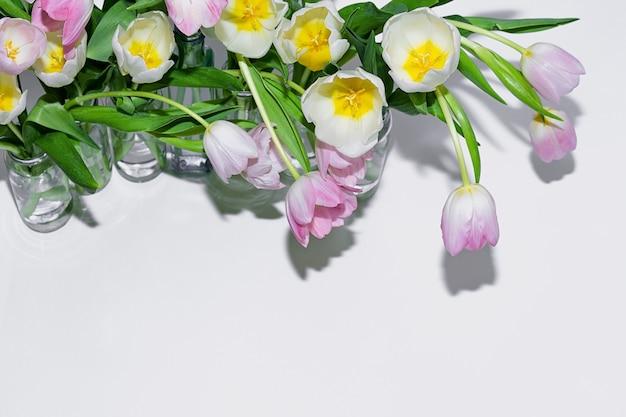 Vista superior dos ramalhetes das tulipas nos frascos de vidro em um fundo branco.