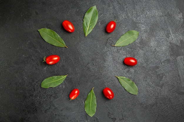 Vista superior dos tomates cereja e folhas de louro em solo escuro