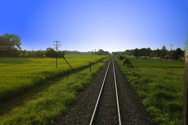 Vista superior dos trilhos enferrujados, cruzando o campo verde em um dia de verão