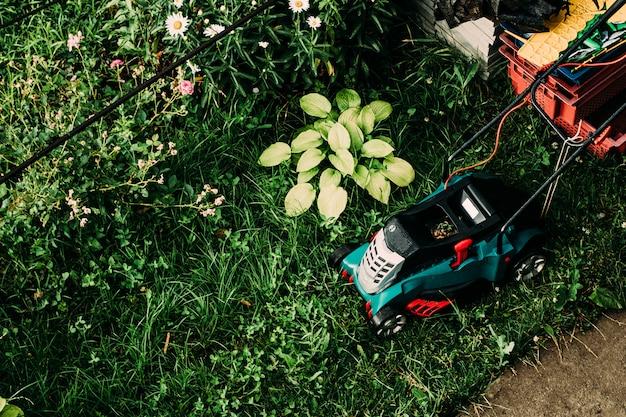 Vista superior em cortar a grama. cuidar do jardim e grama.