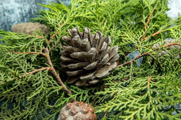 Vista superior fechada e abertos ramos de pinheiro de pinhas