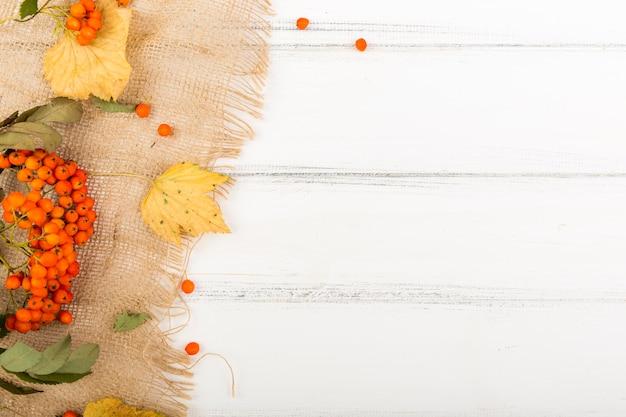 Vista superior firethorn e folhas com espaço de cópia