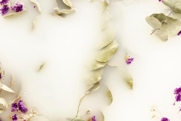 Vista superior folhas pálidas e flores roxas na água branca