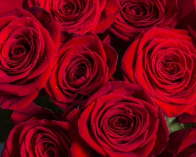 Vista superior lindo buquê de rosas