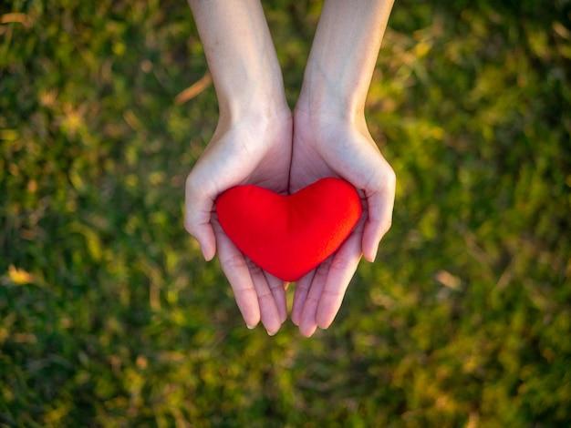 Vista superior mão da jovem mulher que guarda o coração vermelho.