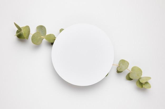 Vista superior moldura branca rodeada de folhas