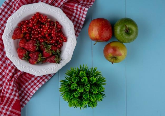 Vista superior morangos com groselhas num prato com maçãs e uma toalha de cozinha vermelha sobre um fundo azul claro