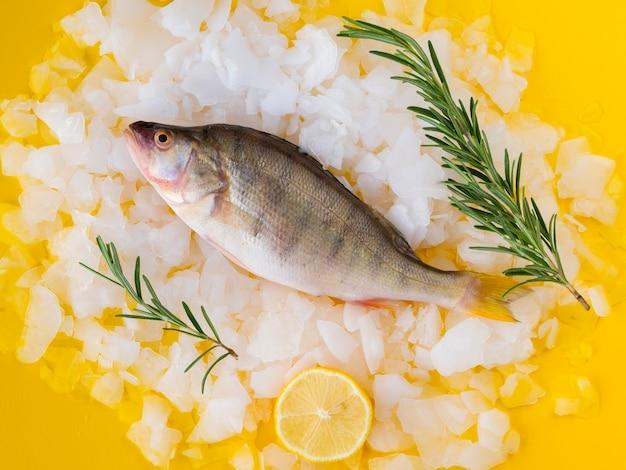 Vista superior peixe fresco com ervas e limão