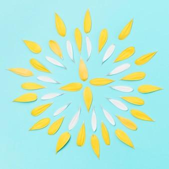 Vista superior pétalas de gerbera amarela
