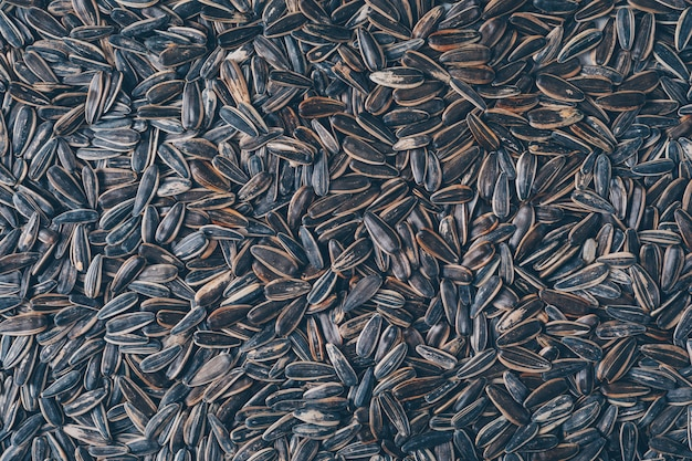 Vista superior preto sementes de girassol. horizontal