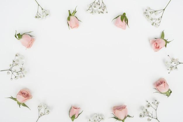 Vista superior rosa botões quadro e cópia espaço fundo