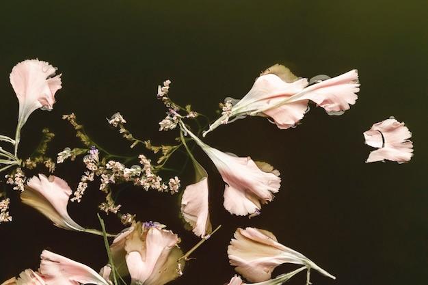 Vista superior rosa pálido flores na água