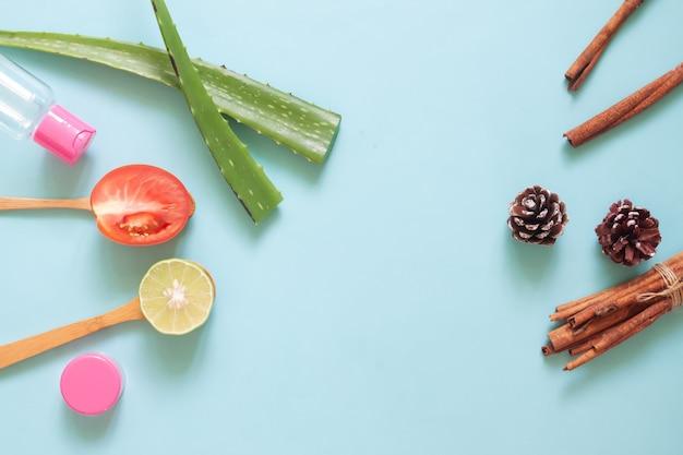 Vista superior skincare ingredientes naturais em fundo pastel