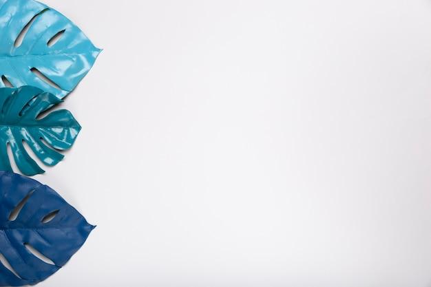Vista superior tom azul em folhas de papel