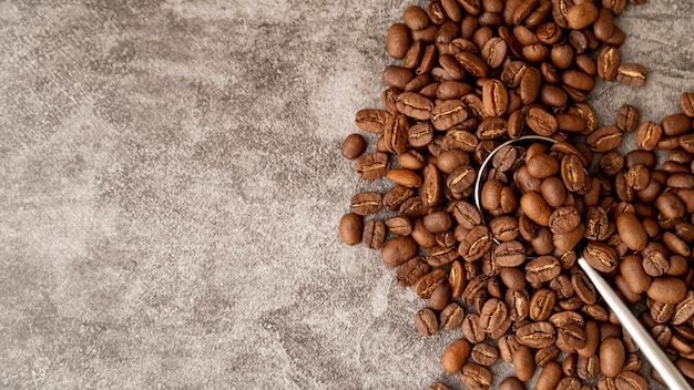 Vista superior torrado grãos de café com espaço de cópia