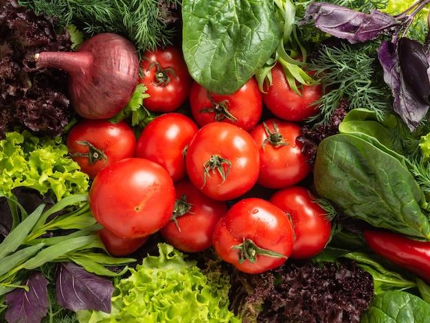 Vista superior - várias ervas frescas comestíveis, verdes e roxas estão dispostas em um círculo, no centro estão tomates vermelhos, pimentões e cebolas borgonha