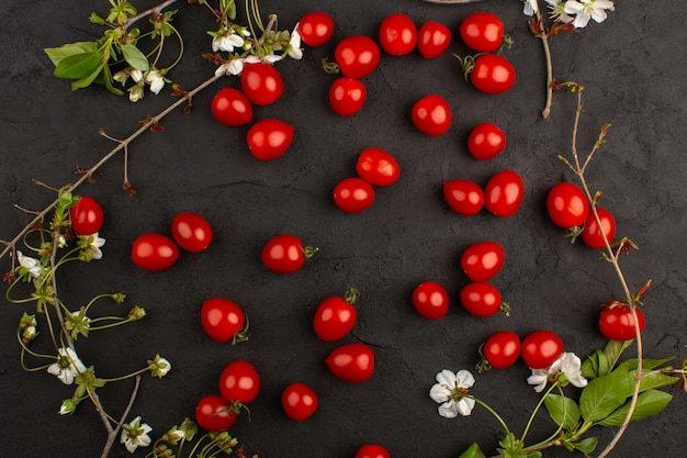 Vista superior vermelho tomate cereja fresco maduro sobre o fundo escuro