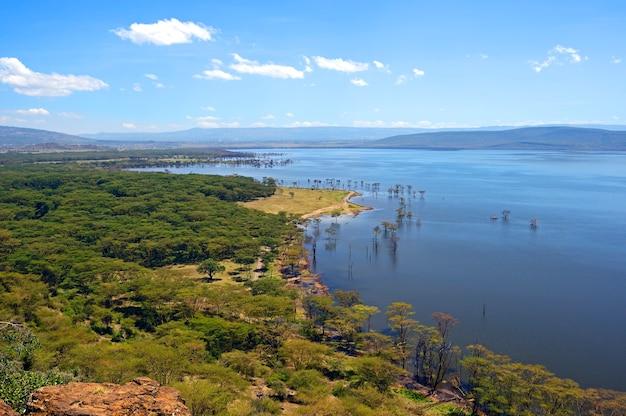 Vista tranquila sobre o lago nakuru. áfrica. quênia