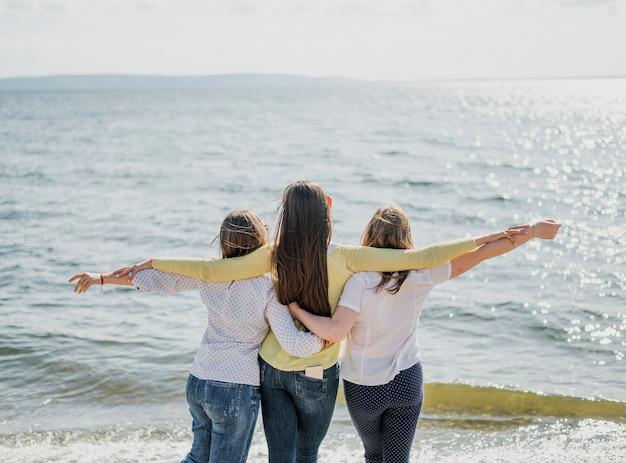 Vista traseira amigos à beira-mar
