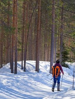 Vista traseira da mulher andando no campo coberto de neve na floresta