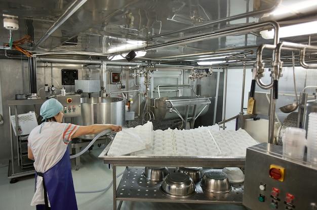 Vista traseira da trabalhadora lavando ferramentas e equipamentos na fábrica de queijo e laticínios, produção de alimentos, espaço de cópia