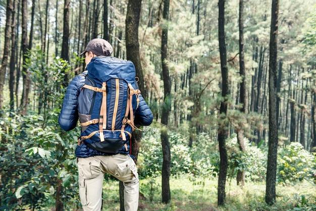Vista traseira, de, asiático, viajante, homem, com, mochila