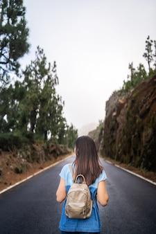 Vista traseira, de, cabelo longo, morena, menina, andar, ligado, a, nebuloso, estrada, em, a, montanhas