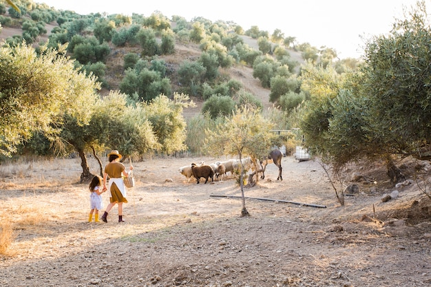 Vista traseira, de, mãe, e, dela, filha, herding, sheeps, em, a, campo